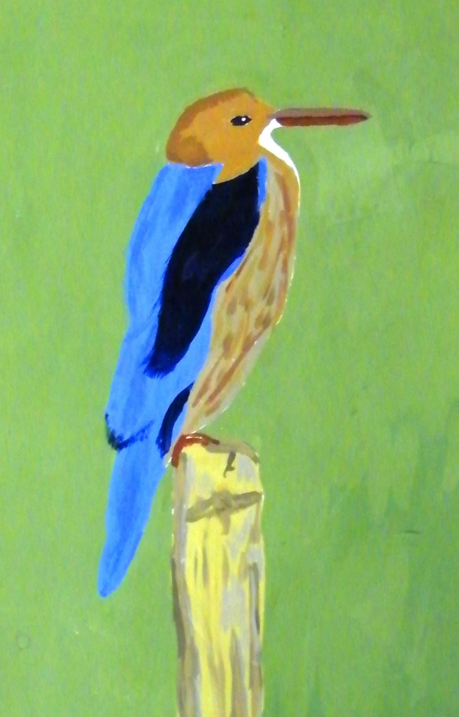 Lynn Hughes, Kingfisher