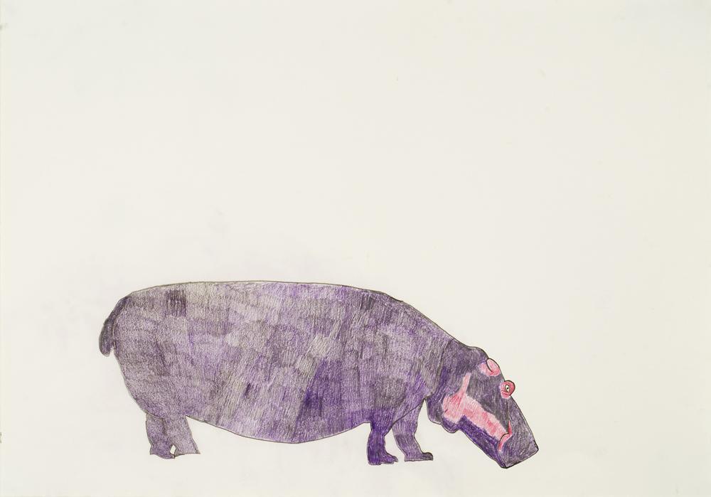 Hippo, by Neville  Jermyn
